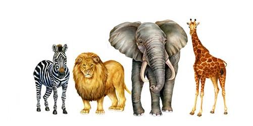 A zebra, a lion, an elephant and a giraffe