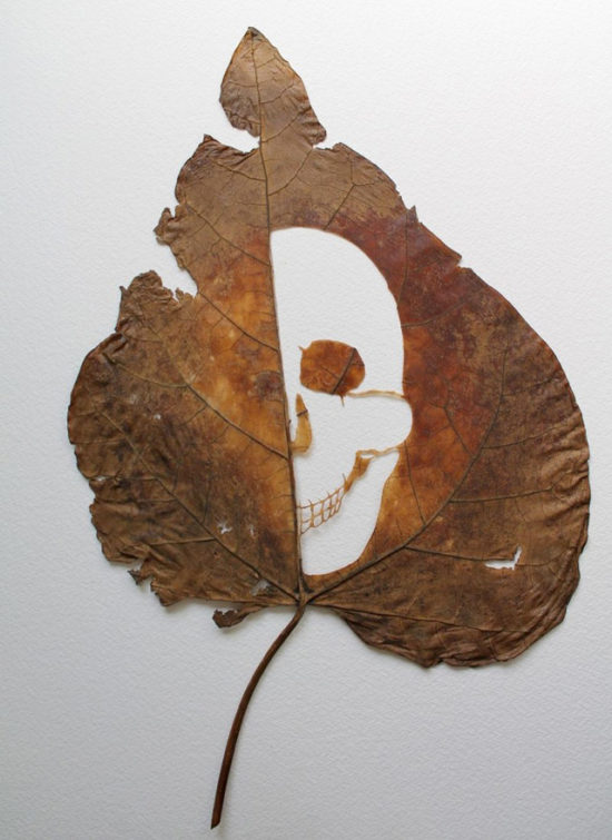 Leaf cut art by Spanish self-taught artist Lorenzo Duran