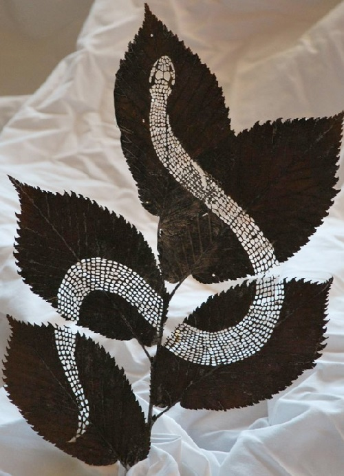 A snake. Artful Leaf cutting by Spanish self-taught artist Lorenzo Duran