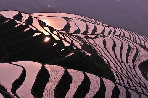 Impressive view of terraced fields