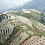 Hills covered with terraced fields