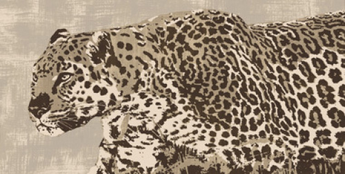 Beautiful art prints by South African artist Andrew Cooper