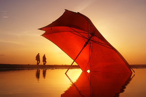 Opened umbrella. Photographer Hermin Abramovitch, Israel