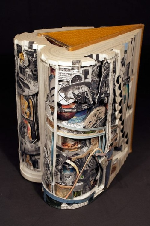 Unique Conceptual sculptures from books by American artist Brian Dettmer
