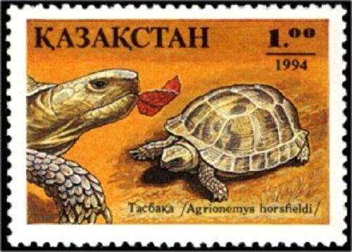 Central Asian tortoise on Kazakhstan's stamp