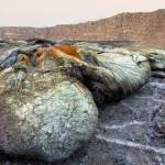Stones and rocks. Danakil Depression desert
