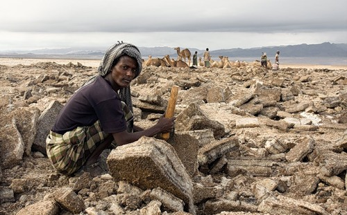 People, inhabiting the desert. Photo by Viktoria Rogotneva