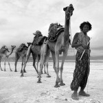 The local with camels. Danakil Depression desert by Russian photographer Viktoria Rogotneva