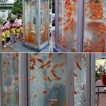 Street installation – Goldfish Phone Booth Aquariums