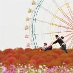 Tourist destination – The Hitachi Seaside Park, east coast of Hitachinaka, Japan