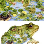 Collage illustrations by American nature-loving artist Janet Skiles