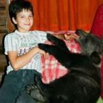 Favorite of all member of the family, Ilzit, the bear