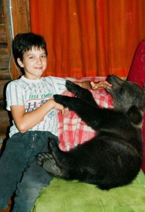 Favorite of all member of the family, Ilzit, the bear