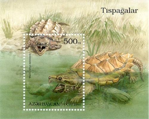 Azerbaijani stamp