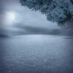 Blue evening. Photographer Nikolay Titov