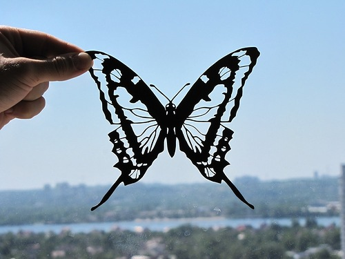 Butterfly paper silhouette. Artists Dmitry and Julia