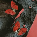 Red butterflies. Photograph that looks like painting, by American artist and photographer Jo Whaley