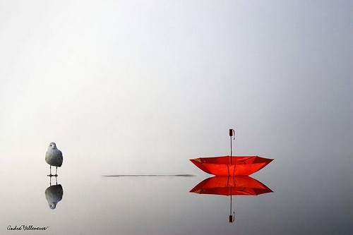 On the water surface. Red umbrella with a bird. Work by Canadian photographer Andre Villeneuve