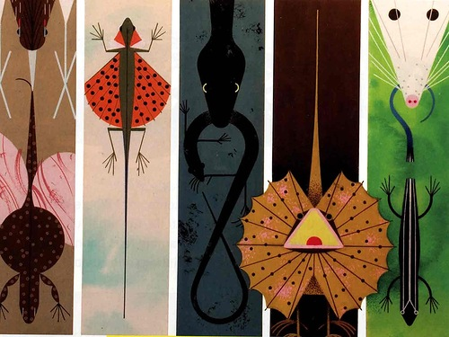 The Golden Book of Biology by American modernist artist Charley Harper