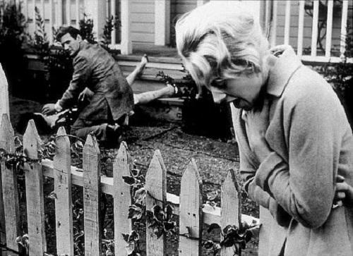 "From Hitchcock's film ""The birds"", Tippi Hedren"