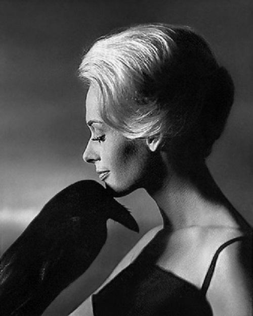 With a black raven, Tippi Hedren