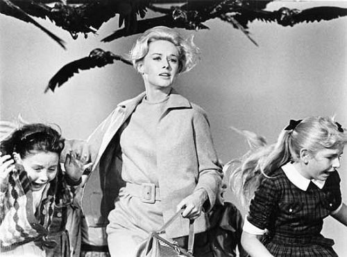 The Birds. Tippi Hedren