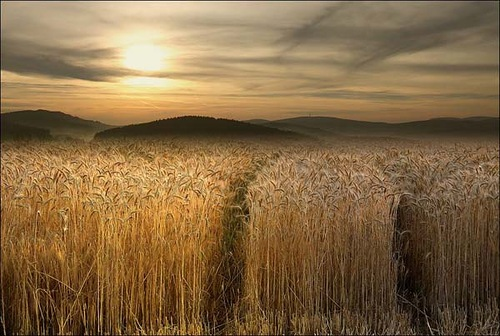 Veronika Pinke incredible photography