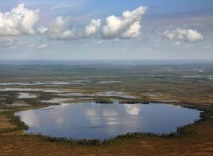 Ponds in The Great Vasyugan Mire