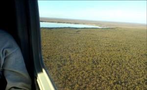 Flying over the Great Vasyugan Mire