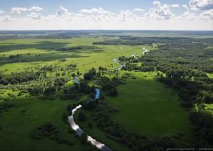 The area of Great Vasyugan Mire