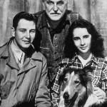Courage of Lassie (1946)
