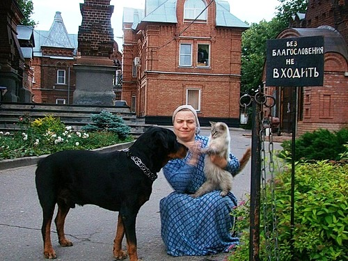 Peaceful dog and suspicious cat. orthodox Christian monks