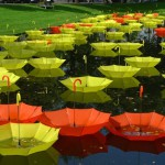 Rows of yellow and red umbrellas floating on the water. Art installation by UK-based artist Luke Jerram