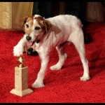 The actor won the Palm Dog Award for best performance by a canine at the 2011 Cannes Film Festival