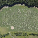 amazing corn labyrinth