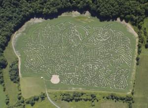 amazing corn labyrinth