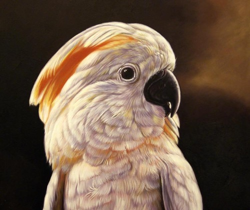 Parrot. Oil on canvas, 2012. Painting by Italian artist Tina Bruno