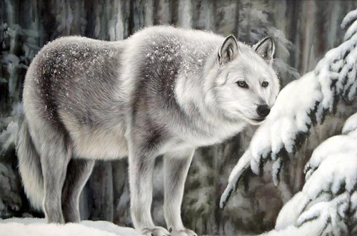 Wolf. Oil on canvas, 2013. Painting by Italian artist Tina Bruno