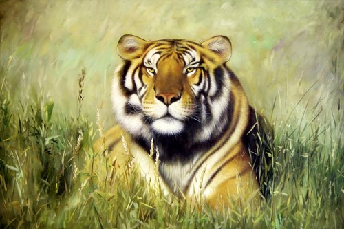 Tiger in the field. Oil on canvas. Painting by Neapol based artist Tina Bruno