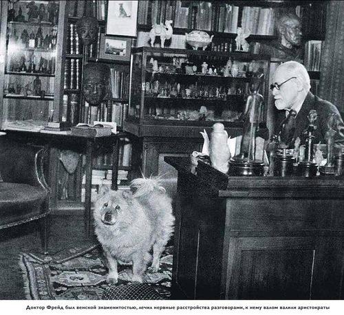 doctor Freud