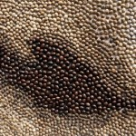 Detail of painting created from coffee beans
