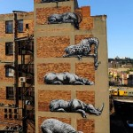 Roa painting beautiful realistic wildlife graffiti