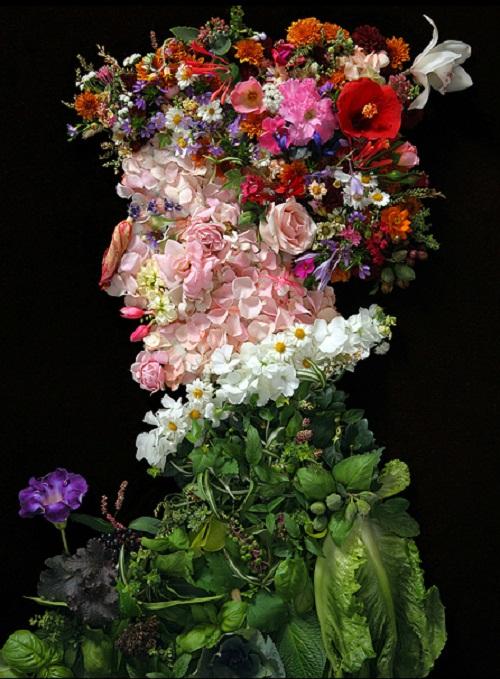 Flower portrait by Klaus Enrique Dzerdes
