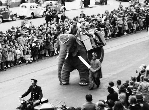 Mechanical elephant attracted viewers