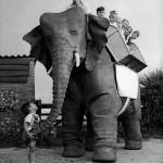 Mechanical elephant gave such joy to children