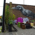 Wonderful work of art – realistic wall painting of a bird on the wall. Brooklyn