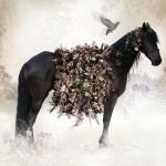 Beautiful Photo-fusion art by Ysabel LeMay