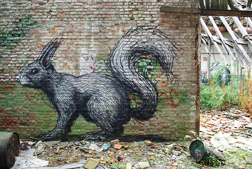 Squirrel. Street art by Belgian graffiti artist Roa