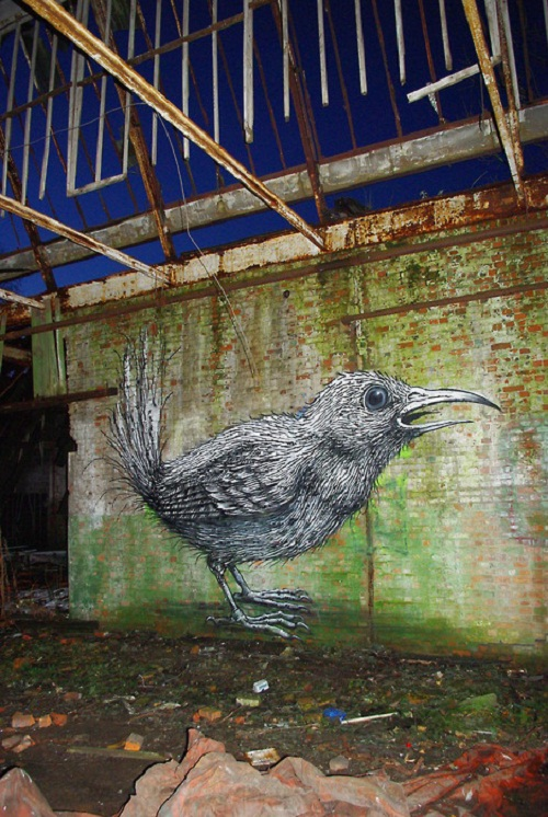 Birds – the main inspiration for Belgian graffiti artist Roa