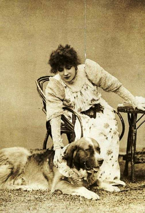 The rooms of her house were inhabited by four dogs
